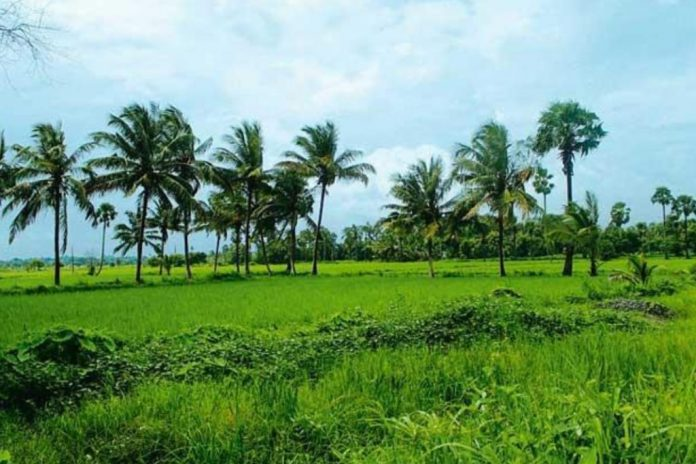 Kerala budget 2019