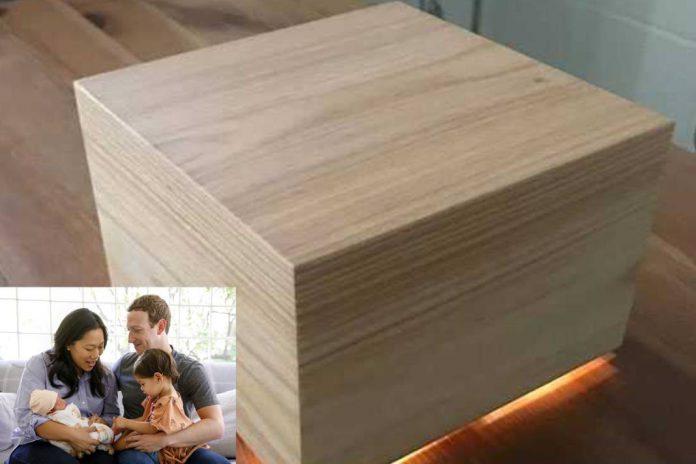 Mark Zuckerberg Sleep Box