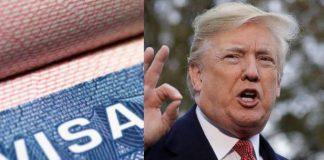trump Visa
