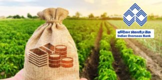 Indian Overseas Bank on special loan scheme for agriculture