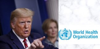 trump to halt funding to WHO