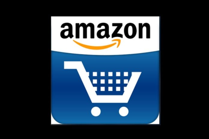 Amazon India gets ~1,125 cr from parent